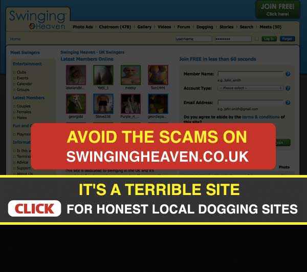 Screenshot of Swingingheaven Homepage
